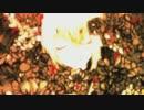 v_flower 「Leia」  カバー