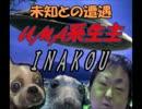 【ニコニコ動画】【鹿児島にUMAは存在した!】 イナコウ 【未知との遭遇】を解析してみた