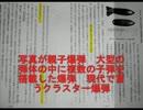 朝鮮進駐軍は居なかったの嘘2/4 thumbnail