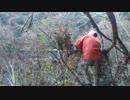 第63位:カメ五郎の狩猟生活(その9)