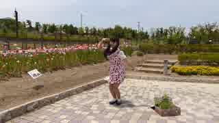 〔☆まにゃかに☆〕おちゃめ機能 踊ってみた (お花畑)
