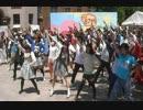 【五月祭】みんなが東大でチルノのパーフェクトさんすう教室踊ってみた thumbnail