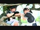【ニコニコ動画】【ねこ玉】すーぱーぬこわーるど【踊ってみた】を解析してみた