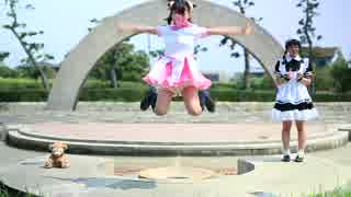 【ねこわかめ】恋の2-4-11踊ってみた♪【セカイイチ アナタガスキ】