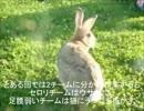 東京スカイツリー1個分のゴミを拾っていく動画その㉓