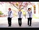 【アルスマグナ】【ARSMAGNA】【 MAD】DANCEコレクション1  thumbnail