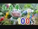【実況】生存率100%のピクミン3【Part8】