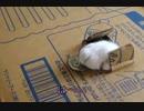 【ニコニコ動画】リアル「猫貯金箱」を解析してみた