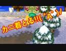 【とびだせどうぶつの森】ジュンとけっこんするために実況プレイpart28