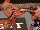 【ニコニコ動画】【UFC】 みんなで☆楽しくMMA!!13 【マクレガー&ラウジー&セラーニ】を解析してみた