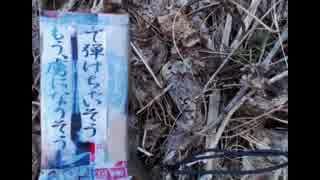 2014年03月03日 休線している西武安比奈線を追う - 謎の手作りボックス