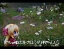 【ニコニコ動画】ニート、旅をする【29日目】を解析してみた