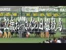 【ニコニコ動画】【中央競馬】プロ馬券師よっさんの日曜競馬 其の四を解析してみた