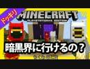 【Minecraft】■□◆四 角 な 世 界 を 丸 く 遊 ぶ●○。part14【PS3】