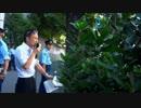 【平成26年8月20日】 韓国民団は不当な内政干渉をやめろ!①