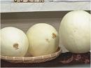 【御礼】ハワイ明治会よりメロンを頂きました[桜H26/8/27]
