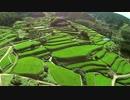 【ニコニコ動画】夏の棚田を飛んでみた【ラジコン空撮】を解析してみた