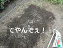 【ニコニコ動画】市民農園を借りて野菜を作ってみる【1週目】を解析してみた