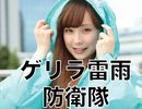 【ゲリラ雷雨防衛隊の証!ポンチョGETのチャンス!】10日以上報告で手に入る!