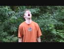 【ニコニコ動画】芝刈り機でゲームを破壊されたニート ~ザナルカンドにて~を解析してみた