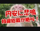 【円安に悲鳴】 韓銀総裁が絶叫!