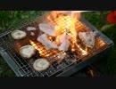 【ニコニコ動画】ウサチョフ、北海道へ行くっ!第5回 『しじみとり in 女満別!』を解析してみた