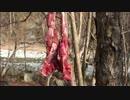 【ニコニコ動画】カメ五郎の狩猟生活(その22)を解析してみた