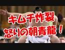 【ニコニコ動画】【キムチ炸裂】 怒りの朝青龍!を解析してみた