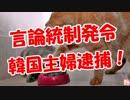 【言論統制発令】 韓国主婦逮捕! thumbnail