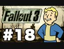 【Fallout3】危険なお散歩【実況】#18