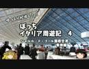 第100位:【ゆっくり】イタリア周遊記4 シャルル・ド・ゴール国際空港乗換編 thumbnail