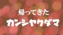 【地球防衛軍4】人は拾った武器だけで防衛できるか?92【ゆっくり実況】 thumbnail
