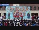 【文化祭で踊ってみた】みんなで叶える物語【ラブライブ】 thumbnail