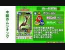 コクワガタ達と共にグレイテストチャンピオンをまた目指す!part2