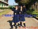 【ニコニコ動画】【Wonder☆Rigel】sweetie×2【踊ってみた】を解析してみた