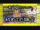 【Minecraft】○◆四角な世界を丸く遊ぶ わっしょい◆○part 22【PS3】