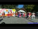 【東大生が】2013駒場祭⑨東大踊々夢【踊ってみた】Day1-2