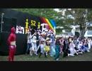 【学祭でアニソンメドレー踊ってみた】ヲタライブ!~それはアニ研の奇跡~
