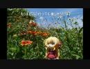 【ニコニコ動画】ニート、旅をする【75日目】を解析してみた