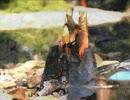 【ニコニコ動画】野良猫式 ジョニーの旅日記 第三話 キャンプに行きたくなった話を解析してみた