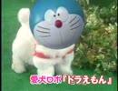 第98位:愛犬ロボ「ドラえもん」 thumbnail