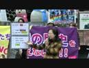 【2014/11/20】子供たちに嘘の歴史を教えないで!in新橋3