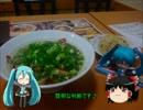 【ニコニコ動画】【鉄音ミクさんと】ミクさんと広島に行ってきたよ Part3【国内旅行】を解析してみた