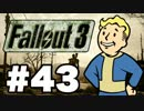 【Fallout3】危険なお散歩【実況】#43