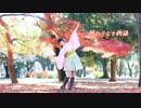 【ニコニコ動画】【のあーる】終わりなき物語 踊ってみた【PSO2】を解析してみた