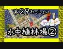 【Minecraft】○◆四角な世界を丸く遊ぶ わっしょい◆○part 29【PS3】