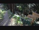 【ニコニコ動画】男二人の気まま旅(五常の滝、北向き地蔵、物見山編)を解析してみた