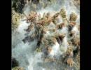 スギ花粉でウッーウッーウマウマ(゚∀゚)