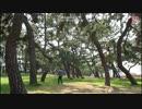 【ニコニコ動画】昼間の公園で独りではしゃぐ32歳無職を解析してみた