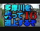 【ゆっくり旅行】多摩川を歩って遡上するぞ16【名も無き道編】